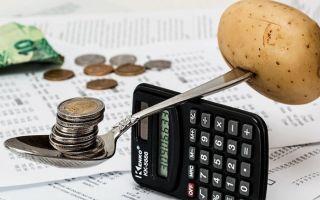 Экономим деньги во время кризиса — продуктовая корзина и траты