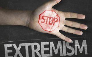 Наказание за экстремизм: статья 282 УК РФ